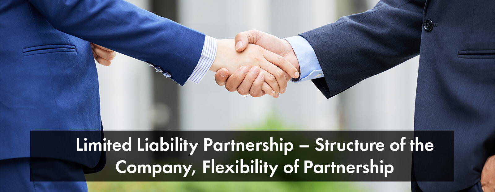 Limited Liability Partnership – Structure of the Company, Flexibility of Partnership