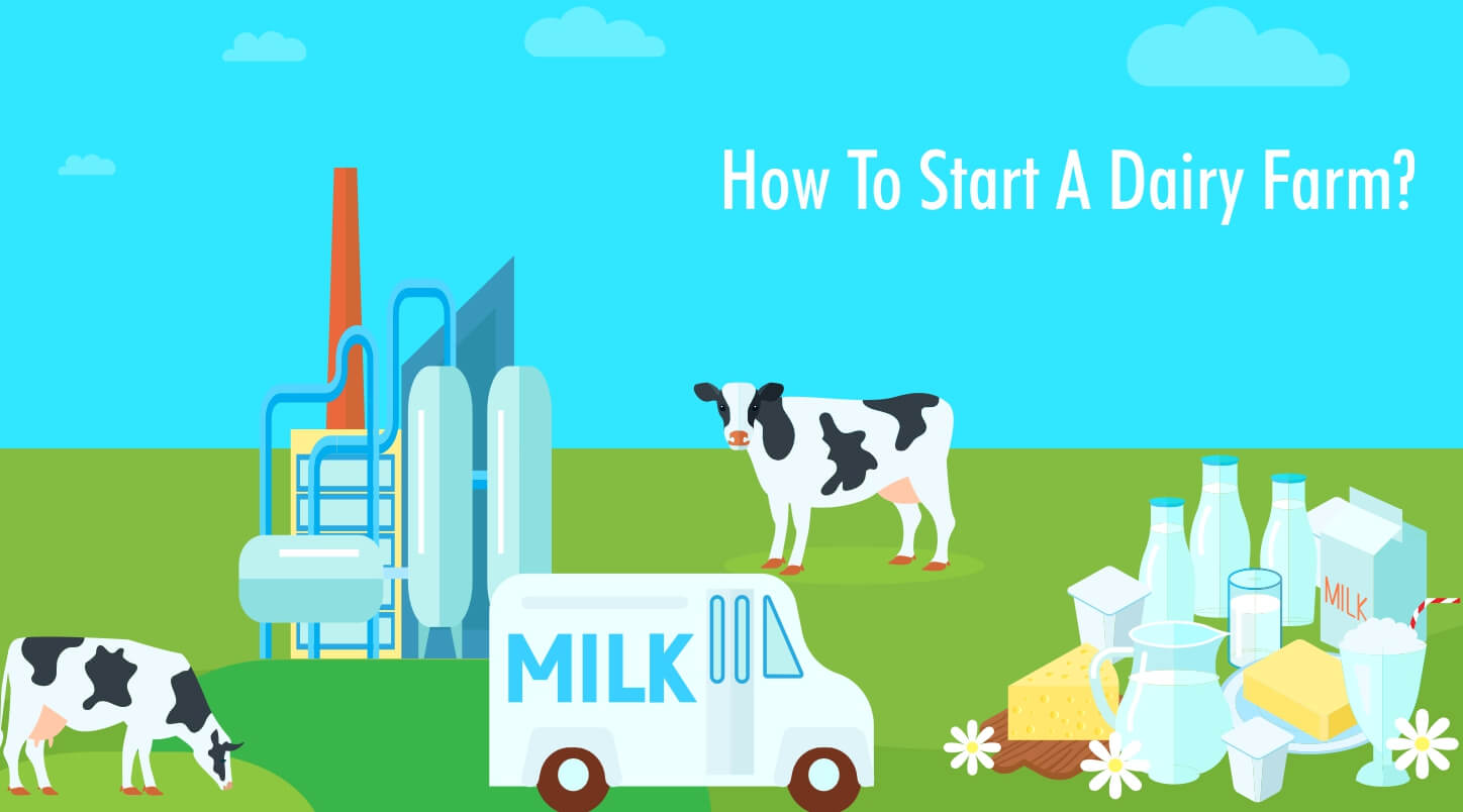 how to start a dairy business?
