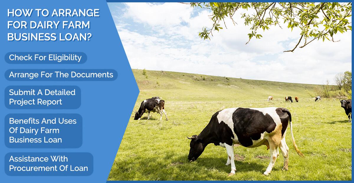 dairy farm business loan
