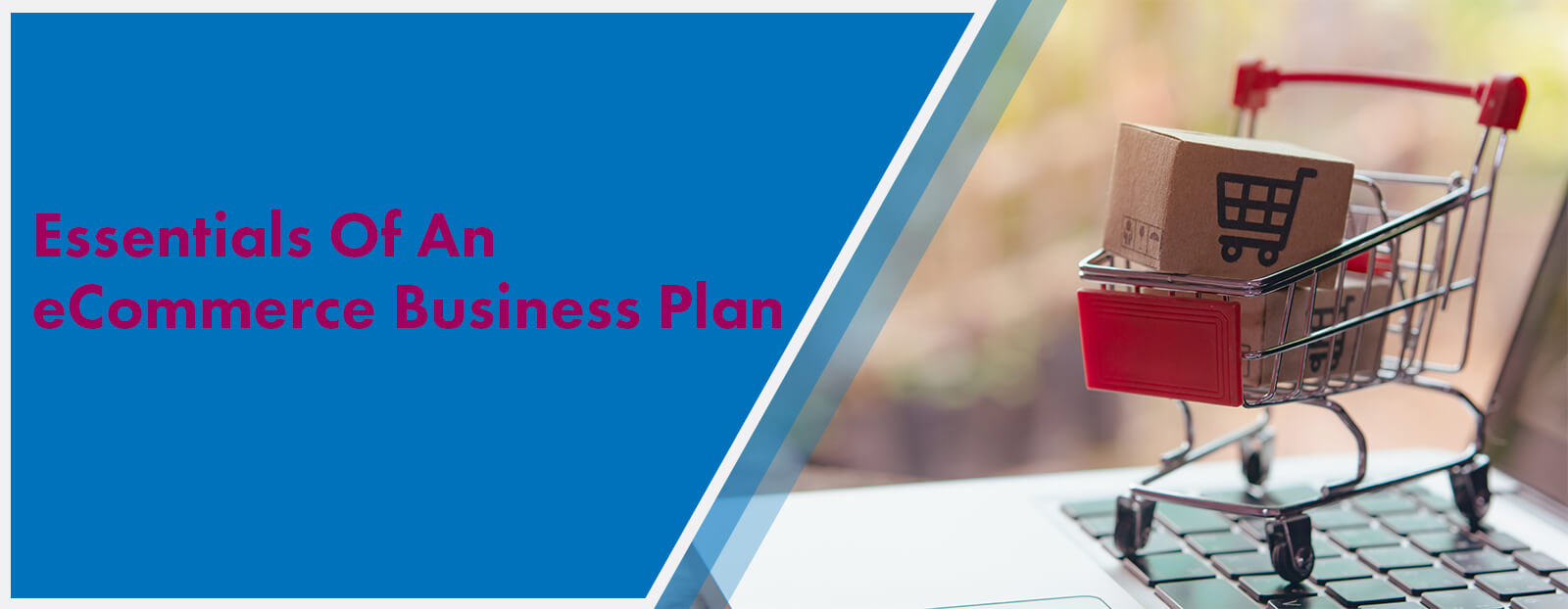 Essentials Of An eCommerce Business Plan