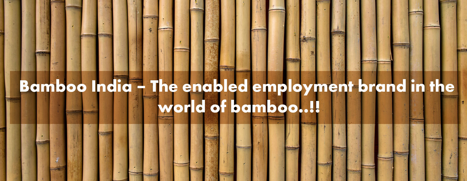 Bamboo India – The enabled employment brand in the world of bamboo..!!