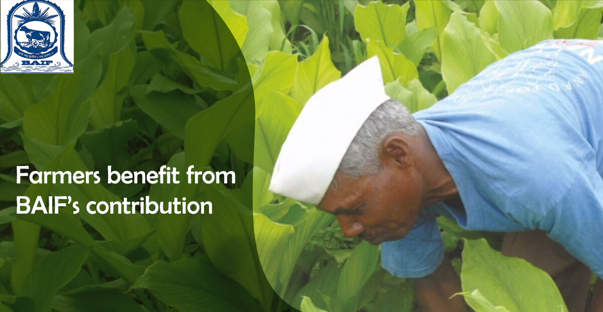 Farmers benefit from BAIF's contribution